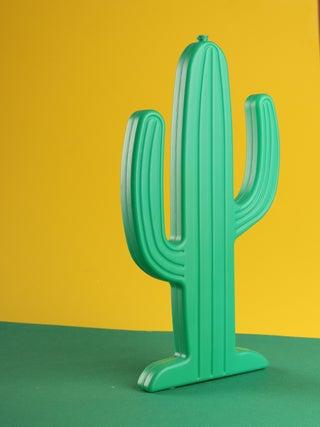 Ice Pack - Cactus
