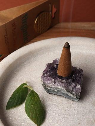 Organic Jumbo Cones White Sage