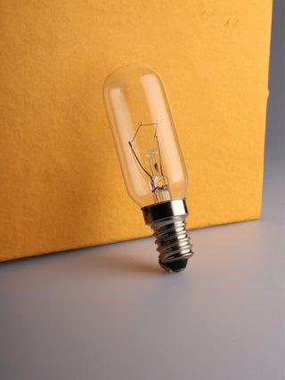 Salt Lamp Bulb 25w
