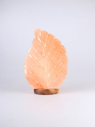Salt Lamp Leaf Shape